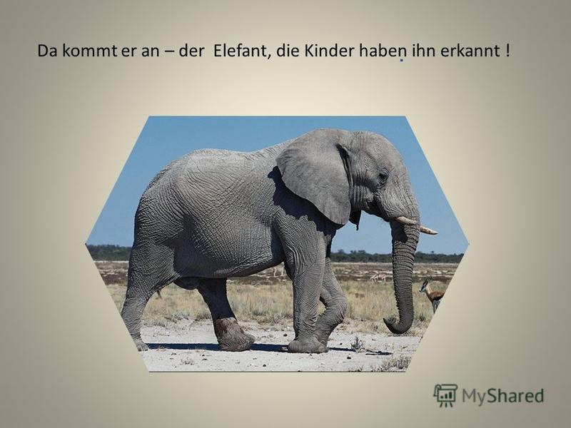 . Da kommt er an – der Elefant, die Kinder haben ihn erkannt !
