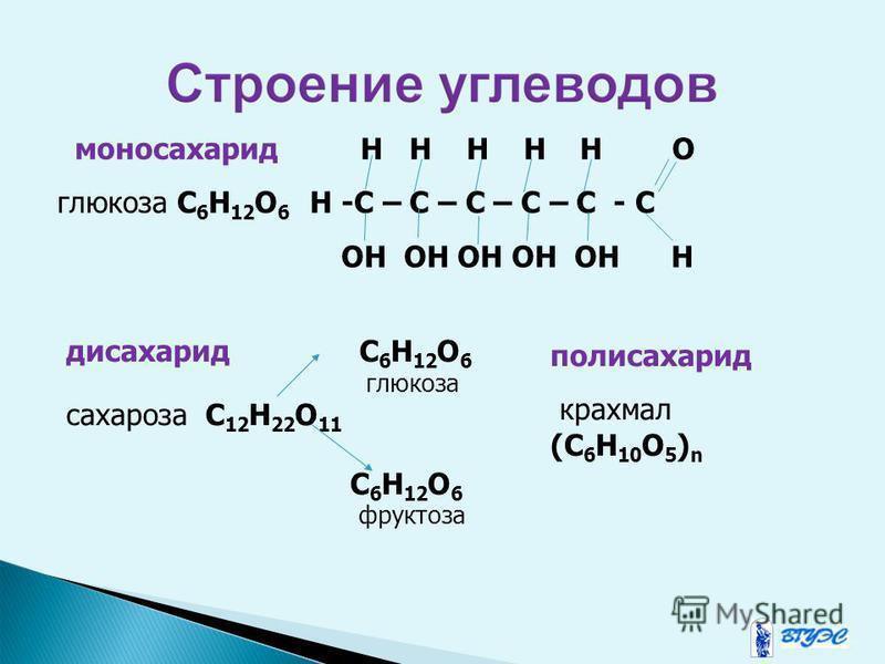 моносахарид H H H H H O глюкоза C 6 H 12 O 6 H -C – C – C – C – C - C OH OH OH OH OH H дисахарид C 6 H 12 O 6 глюкоза сахароза C 12 H 22 O 11 C 6 H 12 O 6 фруктоза полисахарид крахмал (C 6 H 10 O 5 ) n