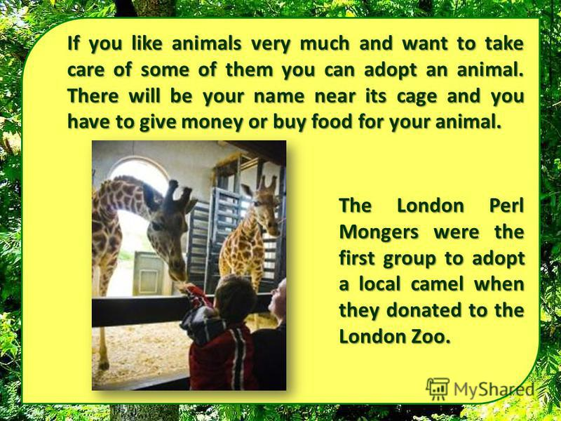 If you like animals very much and want to take care of some of them you can adopt an animal. There will be your name near its cage and you have to give money or buy food for your animal. The London Perl Mongers were the first group to adopt a local c
