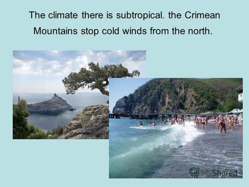 The climate there is subtropical. the Crimean Mountains stop cold winds from the north.
