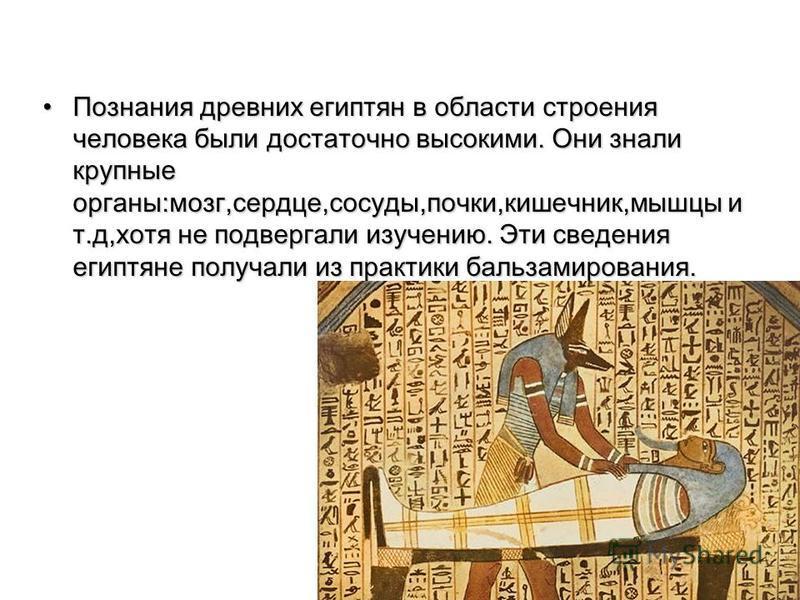 Познания древних египтян в области строения человека были достаточно высокими. Они знали крупные органы:мозг,сердце,сосуды,почки,кишечник,мышцы и т.д,хотя не подвергали изучению. Эти сведения египтяне получали из практики бальзамирования.Познания дре