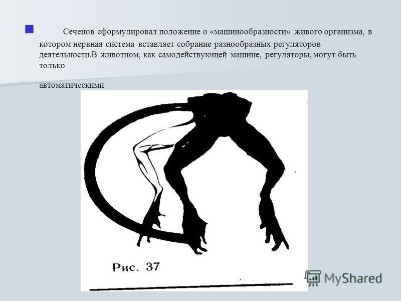 Сеченов сформулировал положение о «машинообразности» живого организма, в котором нервная система вставляет собрание разнообразных регуляторов деятельности. Регуляторы эти, однако, непросты автоматические. В животном, как самодействующей машине, регул
