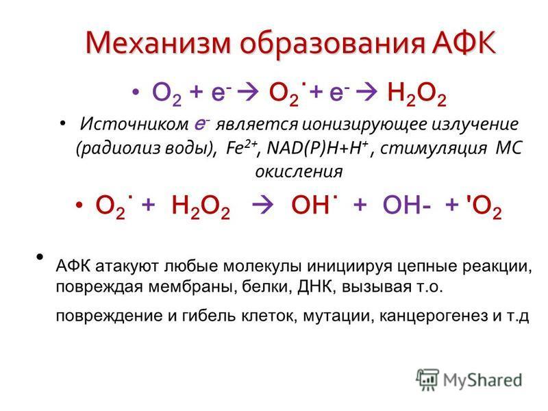 Механизм образования АФК О 2 + е - О 2 ˙+ е - Н 2 О 2 Источником е - является ионизирующее излучение (радиолиз воды), Fe 2+, NAD(P)H + H +, стимуляция МС окисления О 2 ˙ + Н 2 О 2 OH˙ + ОН- + 'О 2 АФК атакуют любые молекулы инициируя цепные реакции,
