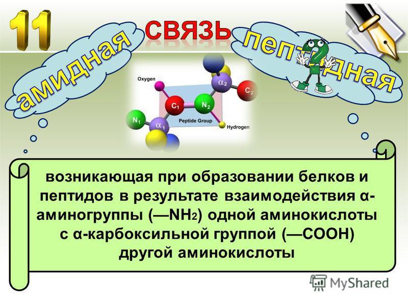 возникающая при образовании белков и пептидов в результате взаимодействия α- аминогруппы (NH 2 ) одной аминокислоты с α-карбоксильной группой (СООН) другой аминокислоты