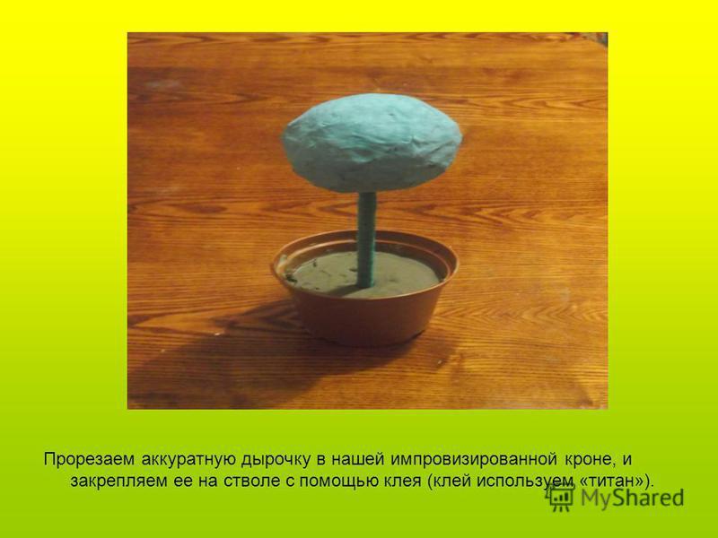 Закрепляем ствол в горшочке для цветов с помощью цемента и даем хорошо просохнуть.