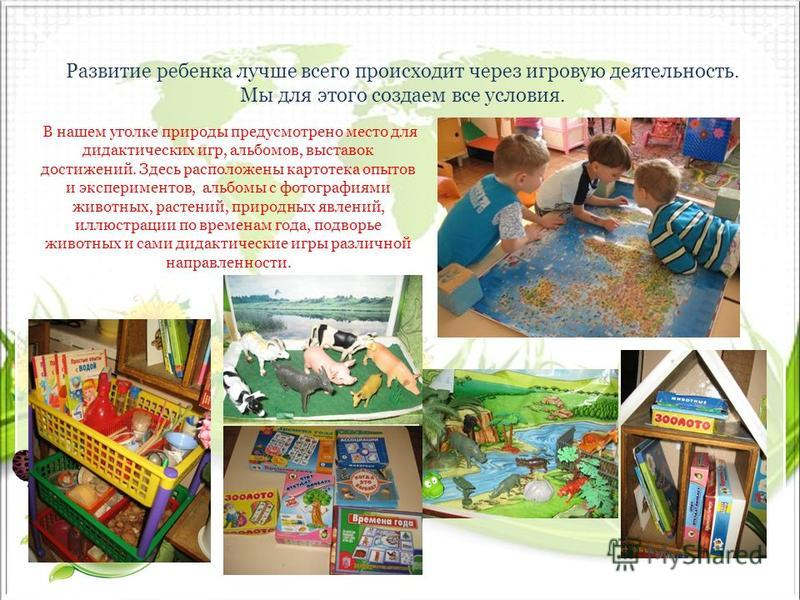 Развитие ребенка лучше всего происходит через игровую деятельность. Мы для этого создаем все условия. В нашем уголке природы предусмотрено место для дидактических игр, альбомов, выставок достижений. Здесь расположены картотека опытов и экспериментов,