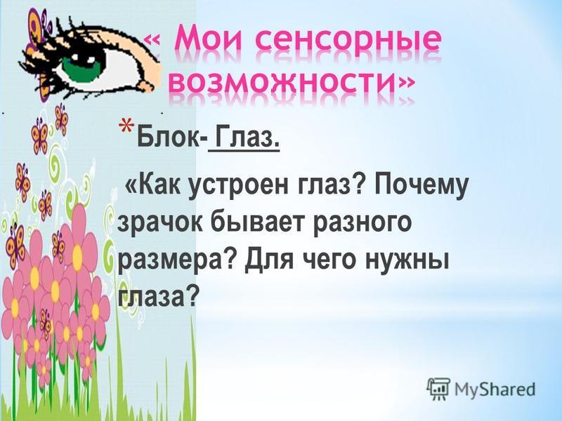 * Блок- Глаз. «Как устроен глаз? Почему зрачок бывает разного размера? Для чего нужны глаза?