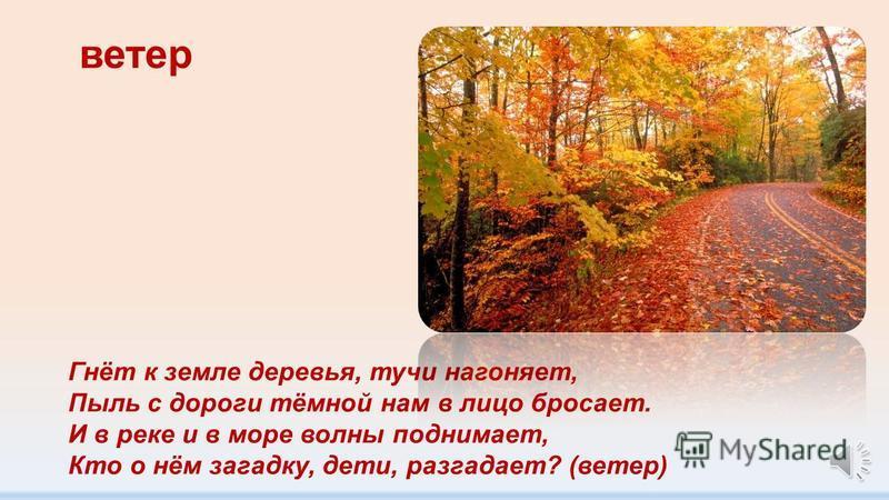 осень Время года отгадай: Собирают урожай, Разноцветный лес красивый, Мокнут скошенные нивы. Тучи по небу гуляют, птицы к югу улетают