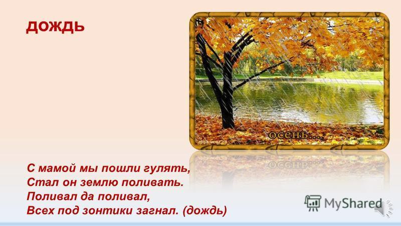 листопад Целый день играют в прятки С ветром рыжие заплатки. (листопад)