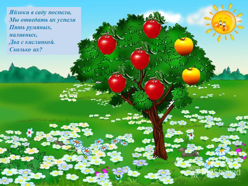 Яблоки в саду поспели, Мы отведать их успели Пять румяных, наливных, Два с кислинкой. Сколько их?