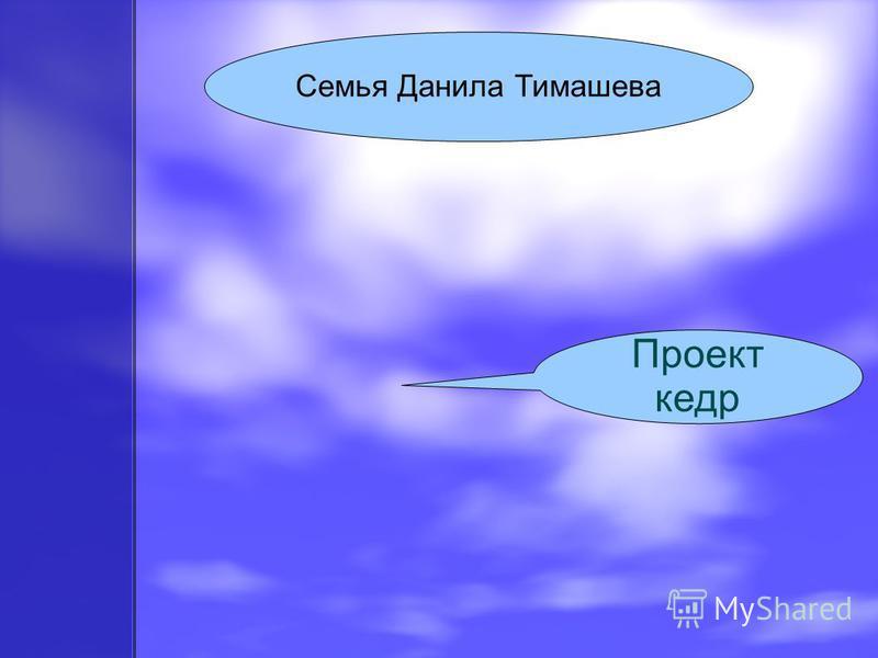 Семья Данила Тимашева Проект кедр