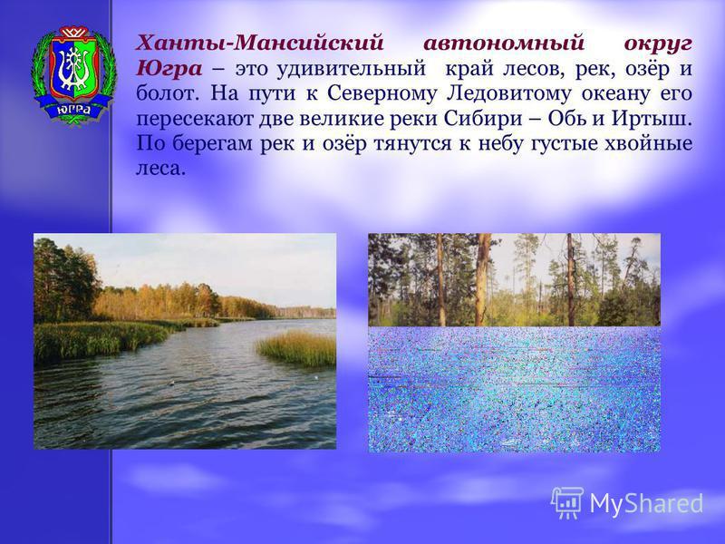 Ханты-Мансийский автономный округ Югра – это удивительный край лесов, рек, озёр и болот. На пути к Северному Ледовитому океану его пересекают две великие реки Сибири – Обь и Иртыш. По берегам рек и озёр тянутся к небу густые хвойные леса.