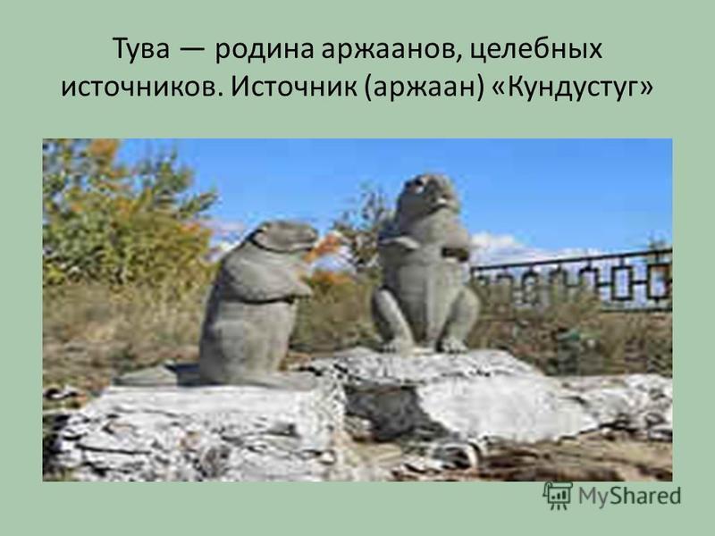 Тува родина аржанов, целебных источников. Источник (аржаан) «Кундустуг»