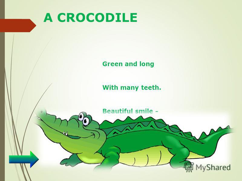 A CROCODILE Green and long With many teeth. Beautiful smile - It`s …