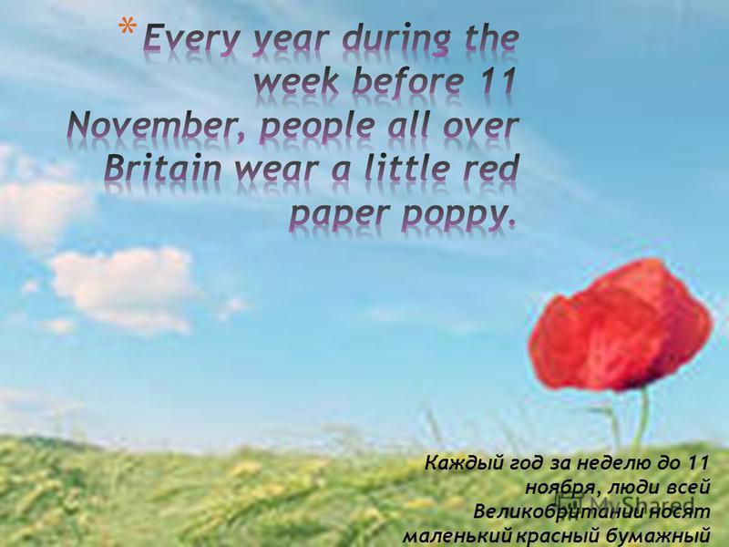 Каждый год за неделю до 11 ноября, люди всей Великобритании носят маленький красный бумажный мак.