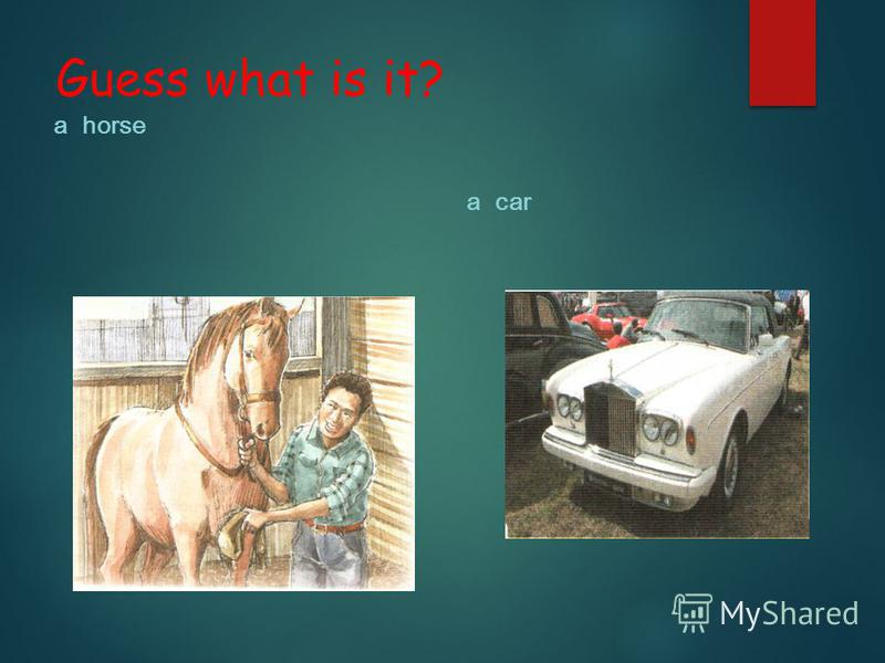 Guess what is it? a horse a car