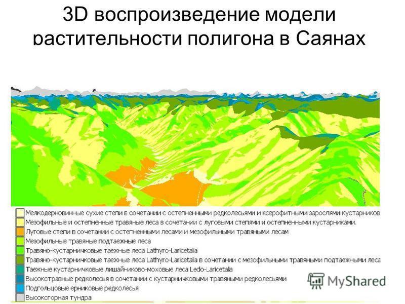 3D воспроизведение модели растительности полигона в Саянах