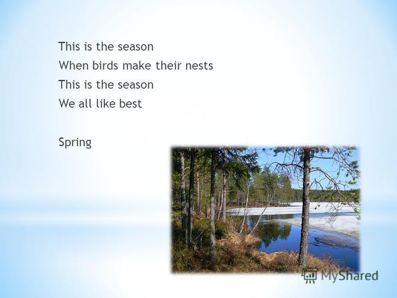 SpringSummer Autumn Winter