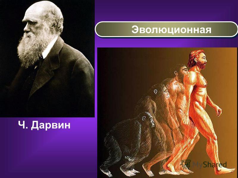Эволюционная Ч. Дарвин