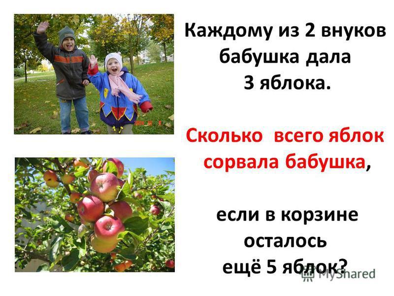 Каждому из 2 внуков бабушка дала 3 яблока. Сколько всего яблок сорвала бабушка, если в корзине осталось ещё 5 яблок?