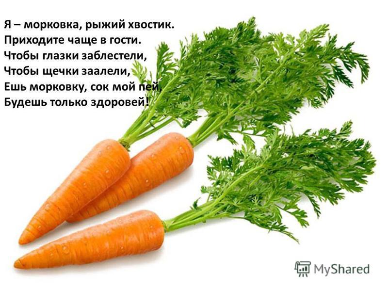 Я – морковка, рыжий хвостик. Приходите чаще в гости. Чтобы глазки заблестели, Чтобы щечки заалели, Ешь морковку, сок мой пей, Будешь только здоровей!