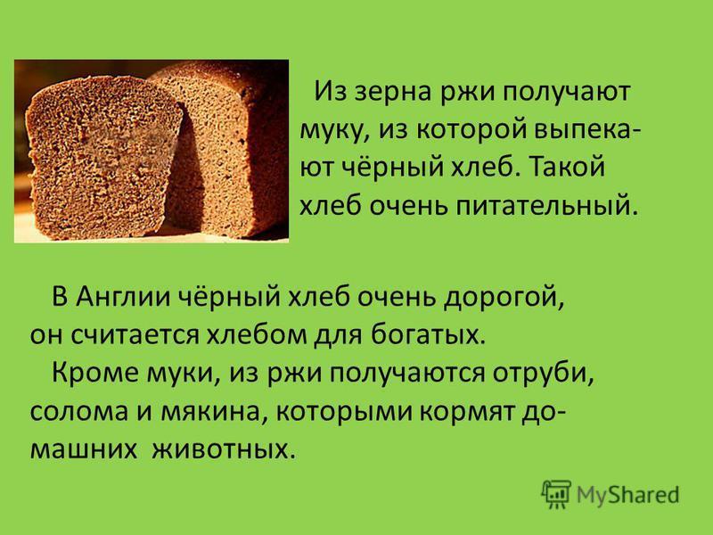 Из зерна ржи получают муку, из которой выпека- ют чёрный хлеб. Такой хлеб очень питательный. В Англии чёрный хлеб очень дорогой, он считается хлебом для богатых. Кроме муки, из ржи получаются отруби, солома и мякина, которыми кормят домашних животных