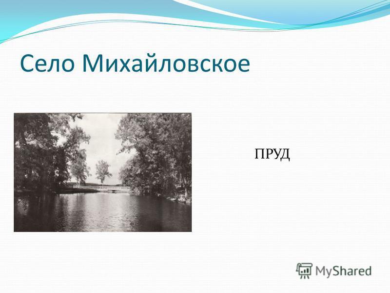 Село Михайловское ПРУД