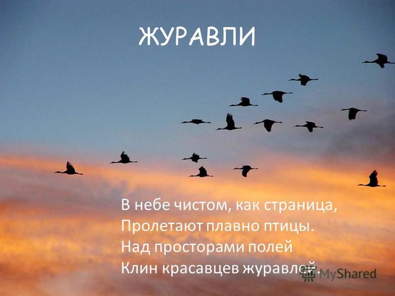 ЖУРАВЛИ В небе чистом, как страница, Пролетают плавно птицы. Над просторами полей Клин красавцев журавлей.