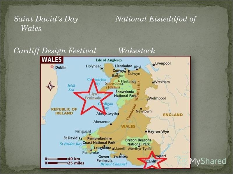 Saint Davids Day National Eisteddfod of Wales Cardiff Design Festival Wakestock