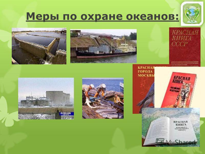 1. Нефтепродукты 2. Пластмассовые отходы 3. Сточные воды с полей и ферм 4. Бытовые отходы, содержащие ядовитые вещества 5. Радиоактивные отходы