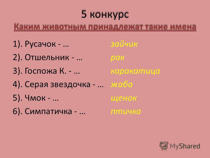 5 конкурс Каким животным принадлежат такие имена 1). Русачок - … 2). Отшельник - … 3). Госпожа К. - … 4). Серая звездочка - … 5). Чмок - … 6). Симпатичка - … зайчик рак каракатица жаба щенок птичка