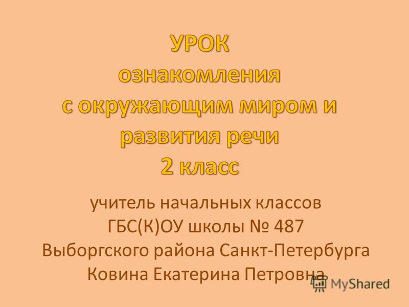 учитель начальных классов ГБС(К)ОУ школы 487 Выборгского района Санкт-Петербурга Ковина Екатерина Петровна