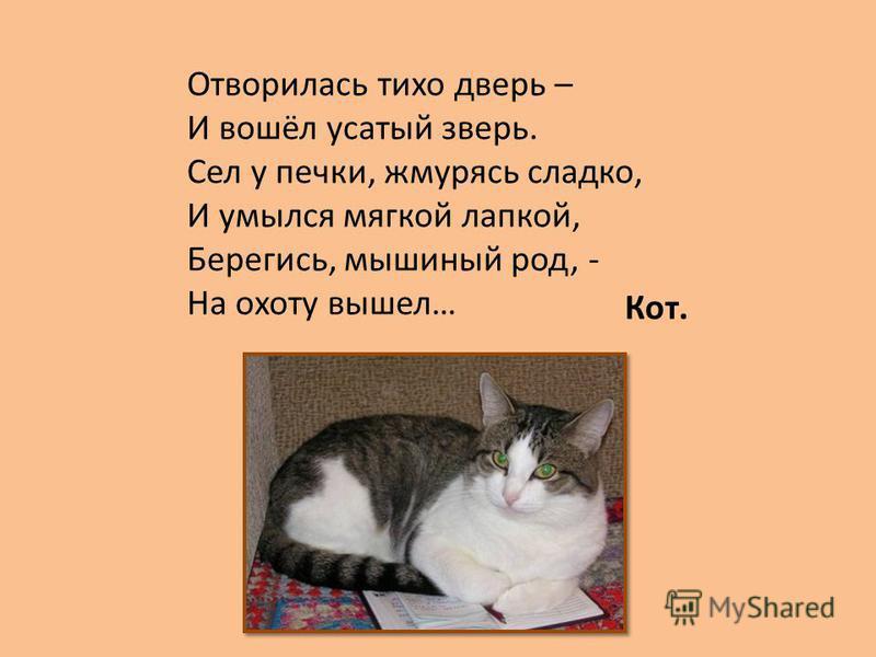 Отворилась тихо дверь – И вошёл усатый зверь. Сел у печки, жмурясь сладко, И умылся мягкой лапкой, Берегись, мышиный род, - На охоту вышел… Кот.