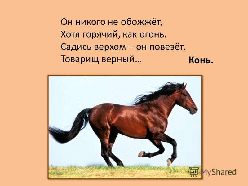 Он никого не обожжёт, Хотя горячий, как огонь. Садись верхом – он повезёт, Товарищ верный… Конь.