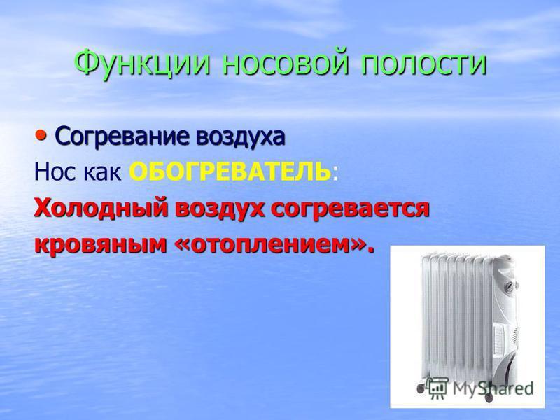 Функции носовой полости Согревание воздуха Согревание воздуха Нос как ОБОГРЕВАТЕЛЬ: Холодный воздух согревается кровяным «отоплением».