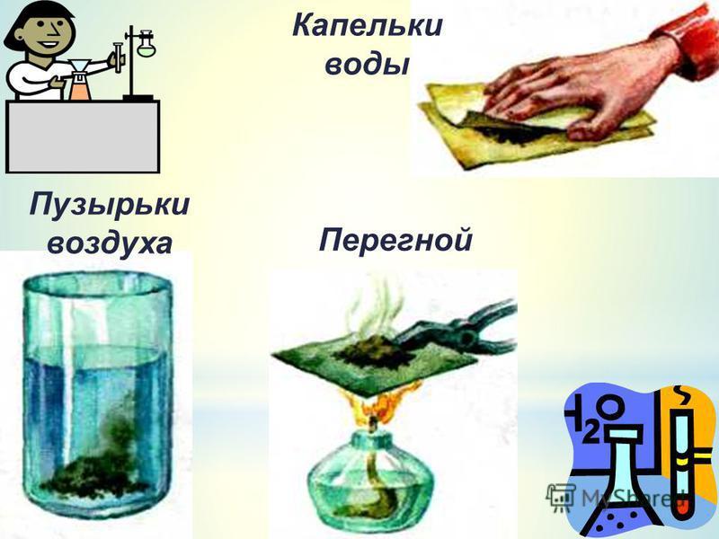 Пузырьки воздуха Капельки воды Перегной