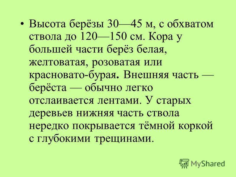 Стройное белоствольное дерево, дающее сквозистую тень, украшающее в любое время года всякий сельский вид, пользуется особой любовью в России. С давних лет берёза была символом России.