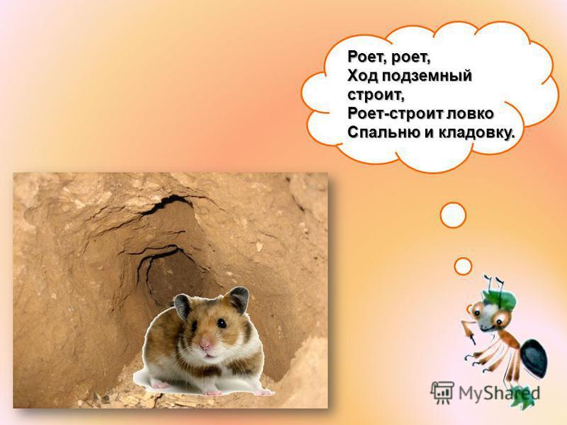 Роет, роет, Ход подземный строит, Роет-строит ловко Спальню и кладовку.