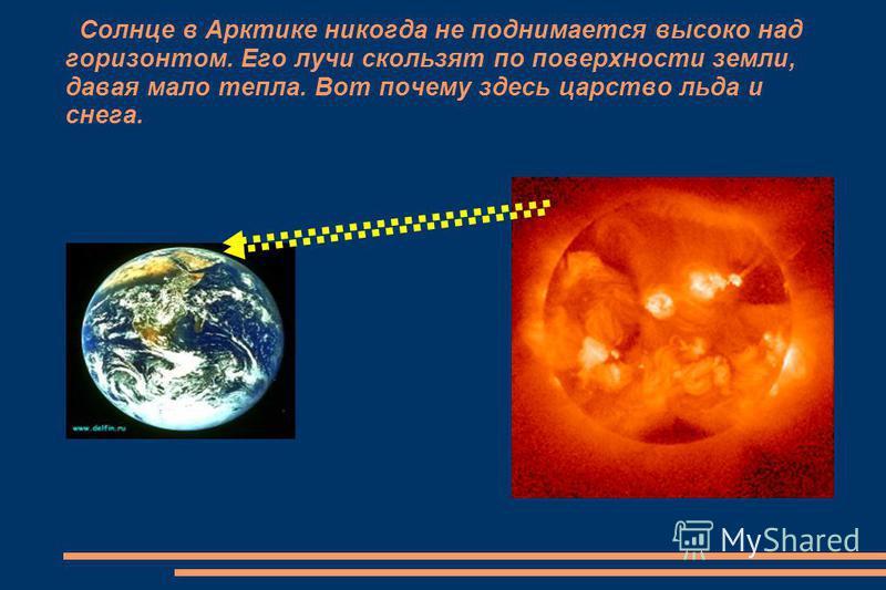 Солнце в Арктике никогда не поднимается высоко над горизонтом. Его лучи скользят по поверхности земли, давая мало тепла. Вот почему здесь царство льда и снега.