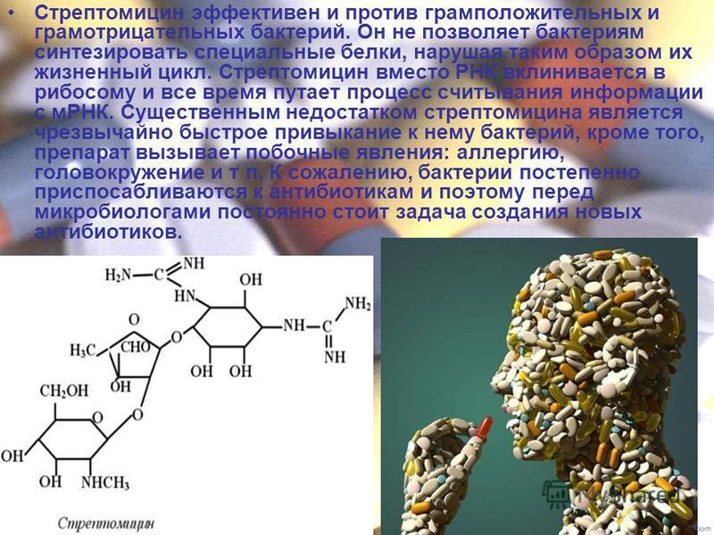 Стрептомицин эффективен и против грамположительных и грамотрицательных бактерий. Он не позволяет бактериям синтезировать специальные белки, нарушая таким образом их жизненный цикл. Стрептомицин вместо РНК вклинивается в рибосому и все время путает пр