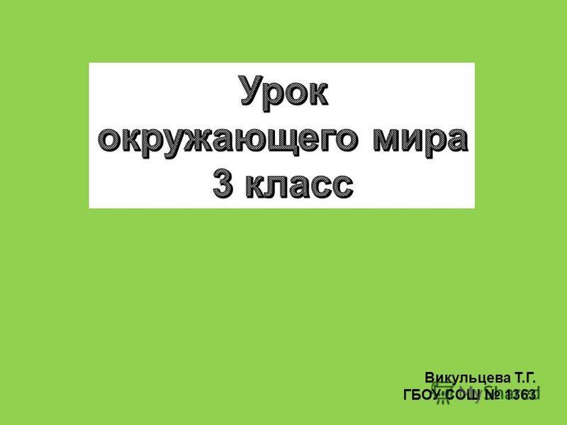 Викульцева Т.Г. ГБОУ СОШ 1363