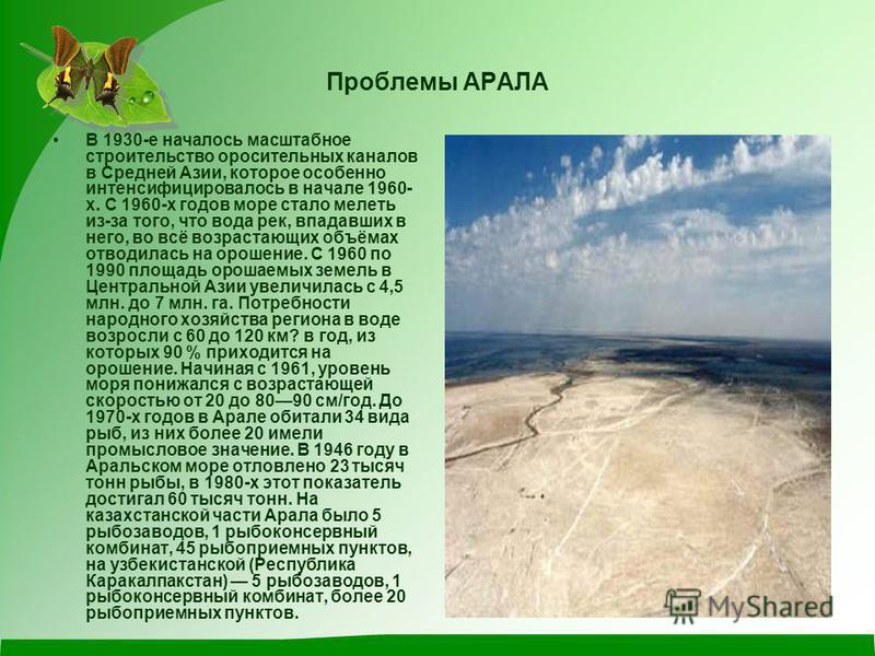 Проблемы АРАЛА В 1930-е началось масштабное строительство оросительных каналов в Средней Азии, которое особенно интенсифицировалось в начале 1960- х. С 1960-х годов море стало мелеть из-за того, что вода рек, впадавших в него, во всё возрастающих объ