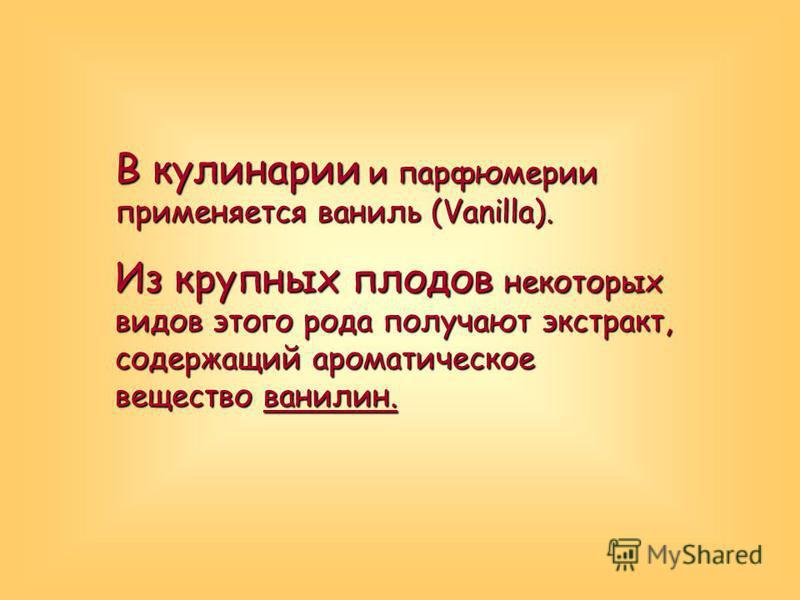 В кулинарии и парфюмерии применяется ваниль (Vanilla). Из крупных плодов некоторых видов этого рода получают экстракт, содержащий ароматическое вещество ванилин.