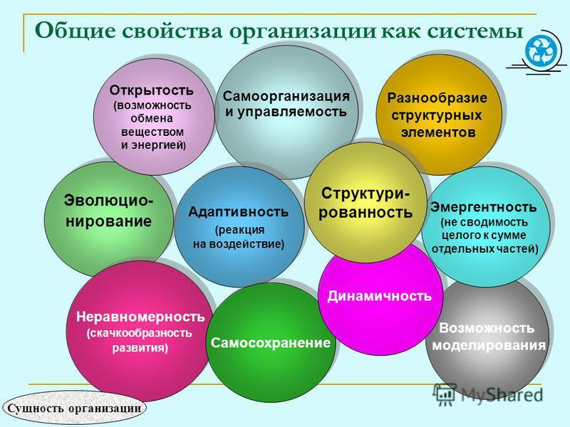 Общие свойства организации как системы Самоорганизация и управляемость Самоорганизация и управляемость Возможность моделирования Возможность моделирования Адаптивность (реакция на воздействие) Адаптивность (реакция на воздействие) Эволюцио- нирование