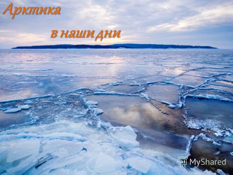 Арктика в наши дни