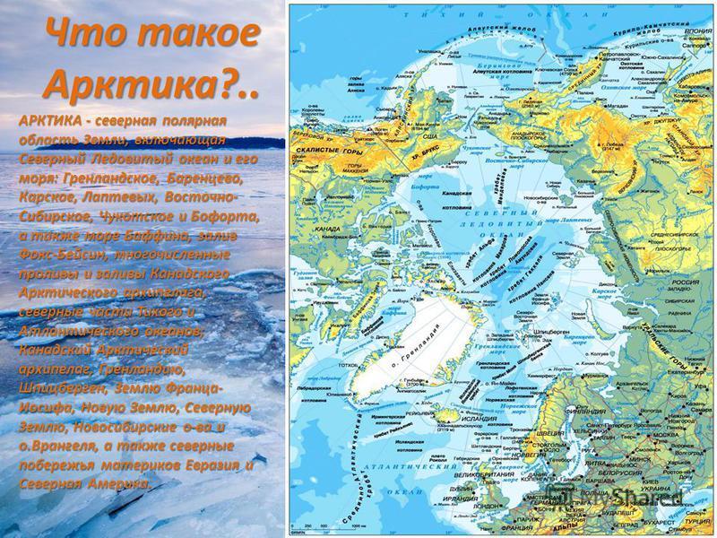 Что такое Арктика?.. АРКТИКА - северная полярная область Земли, включающая Севеpный Ледовитый океан и его моря: Гpенландское, Баpенцево, Каpское, Лаптевых, Восточно- Сибирское, Чукотское и Бофоpта, а также море Баффина, залив Фокс-Бейсин, многочислен