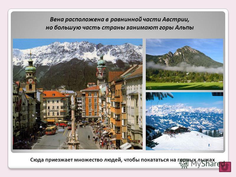 Вена расположена в равнинной части Австрии, но большую часть страны занимают горы Альпы Сюда приезжает множество людей, чтобы покататься на горных лыжах