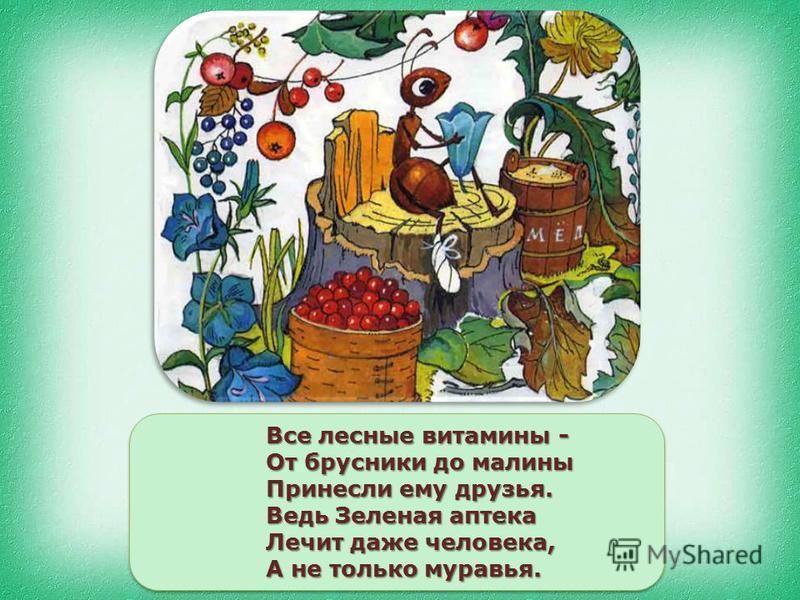Все лесные витамины - От брусники до малины Принесли ему друзья. Ведь Зеленая аптека Лечит даже человека, А не только муравья.