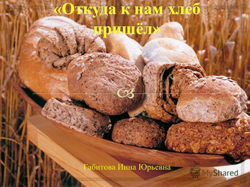 Габитова Инна Юрьевна