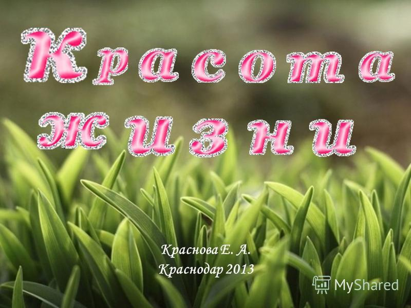Краснова Е. А. Краснодар 2013